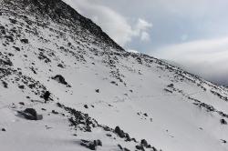 Altay 2015